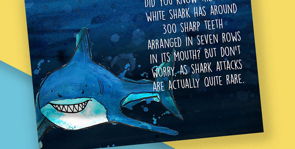 50x Great White Shark Fact Postcards