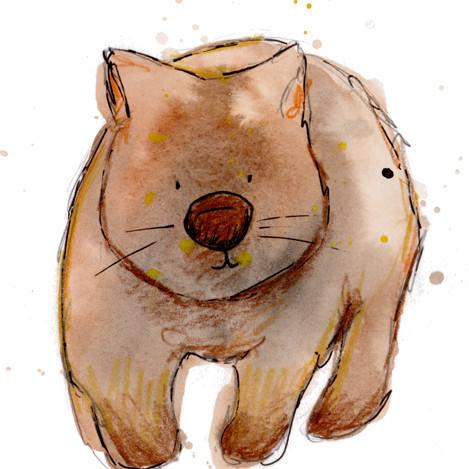 Wombat .jpg