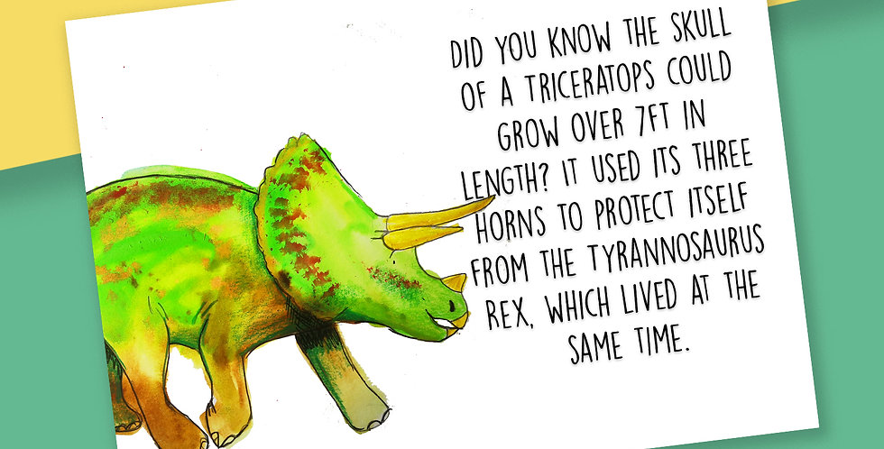 50x Triceratops Fact Postcards
