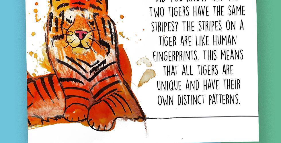 50x Tiger Fact Postcards