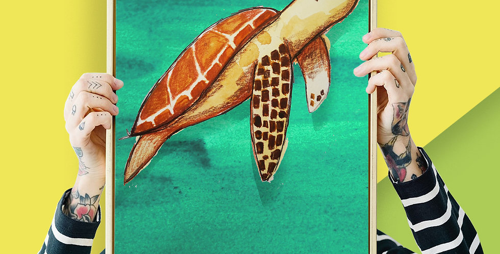 Sea Turtle Illustration Giclee Print A3 or A3