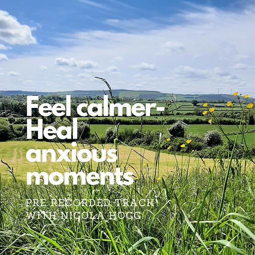 Feel Calmer Download