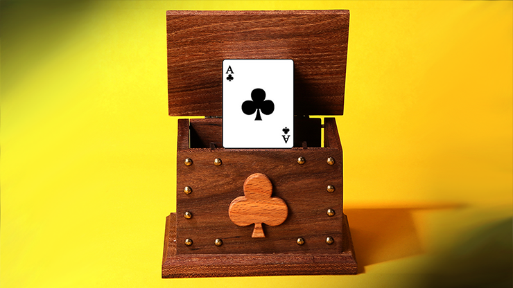 CARD IN THE AIR by Tora Magic