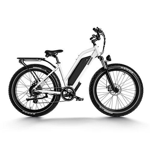 Ninja Electric Fat Bike