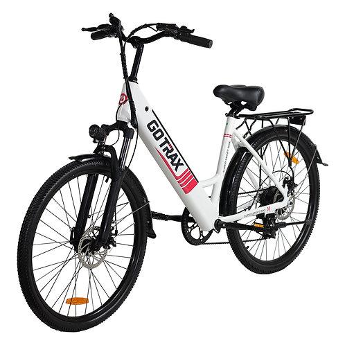 Endura Electric Bike