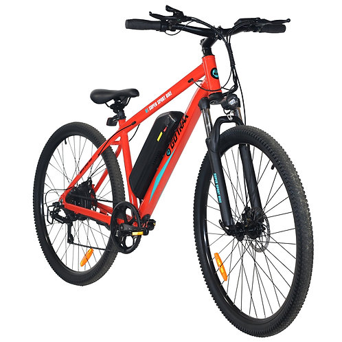 Traveler Electric Bike