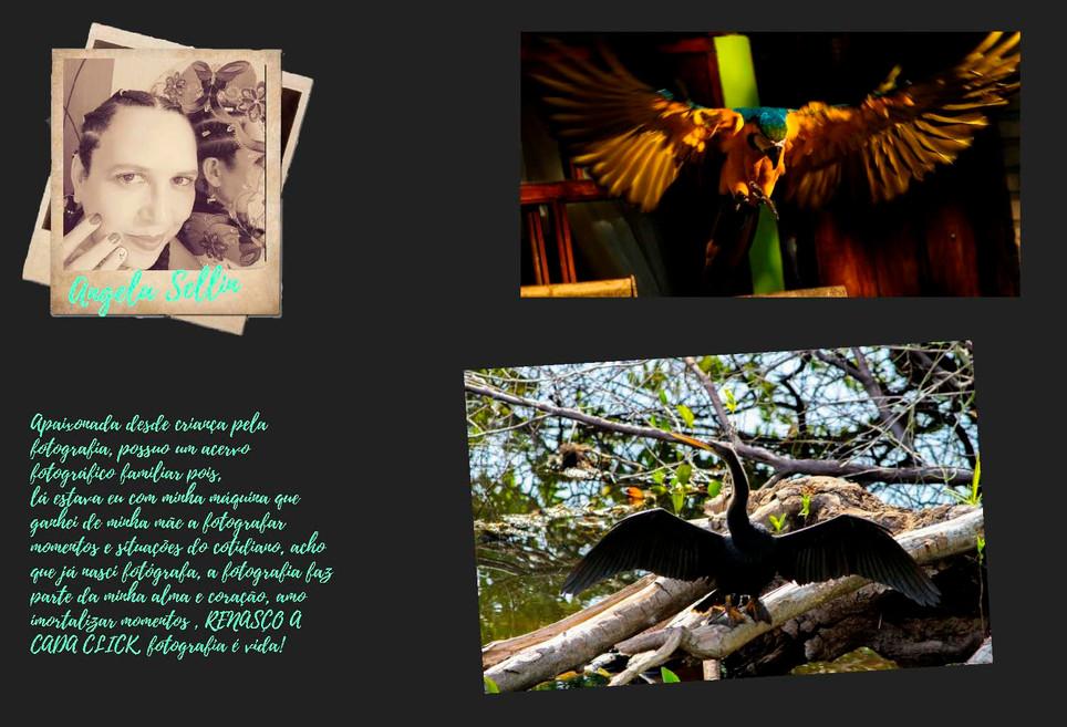Anuário 2019_Página_08.jpg