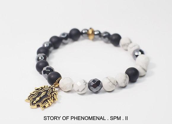 STORY OF PHENOMENAL - SPM - 02