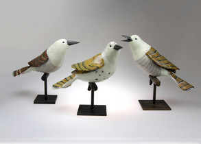 Avian Grouping