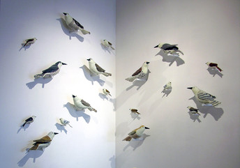 Avian Wall Installation