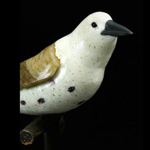 Avian Series