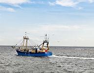 Seafood Industry.jpg