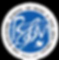 BSM-logo_edited.png