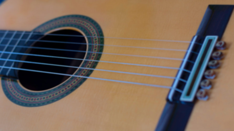 Classical-Guitar-1-DSC_0007.jpg