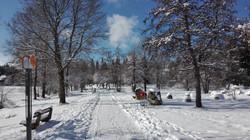 Hier ist der Winter zuhause.