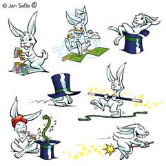 zauberei kaninchen (c)jansasse.jpg