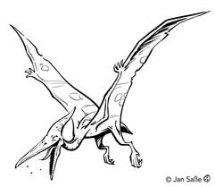 pteranodon funny (c)jansasse.jpg