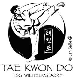 taekwondo (c)jansasse.jpg