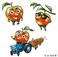 äpfel (c)jansasse.jpg