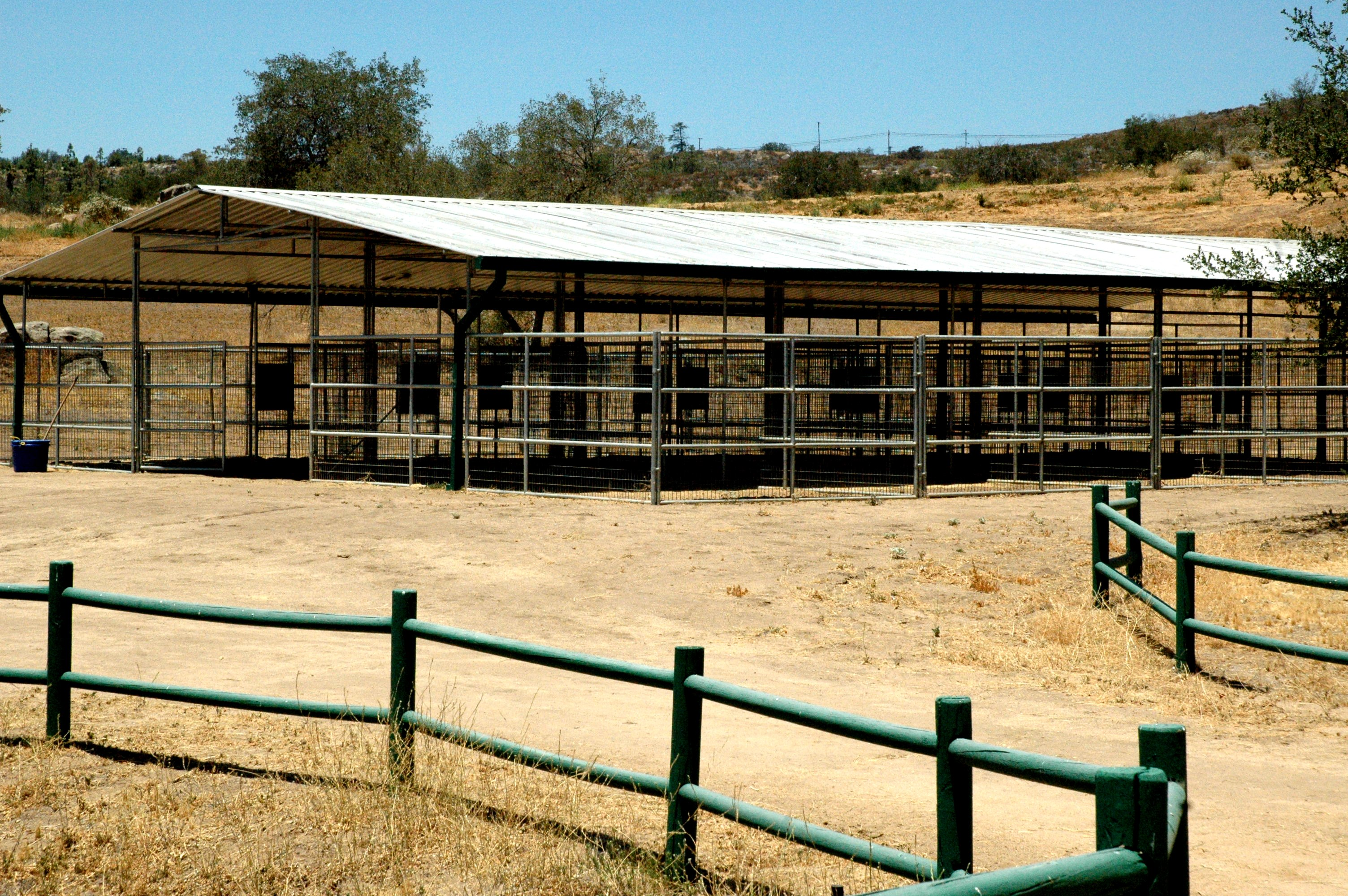 Show Stables