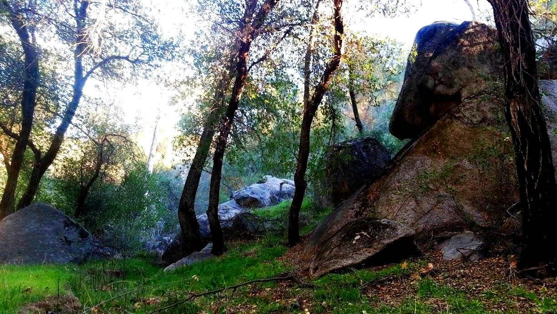 Creek Hollow Ranch