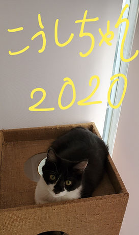 20200101_100602_edited.jpg