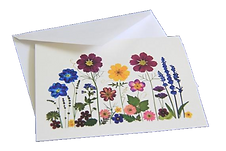Ellie Roden - Pressed Flower Cards