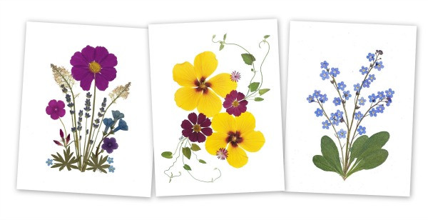 Pressed flower cards by Vermont Pressed Flowers