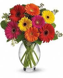 fresh flowers_ Vermont pressed flowers