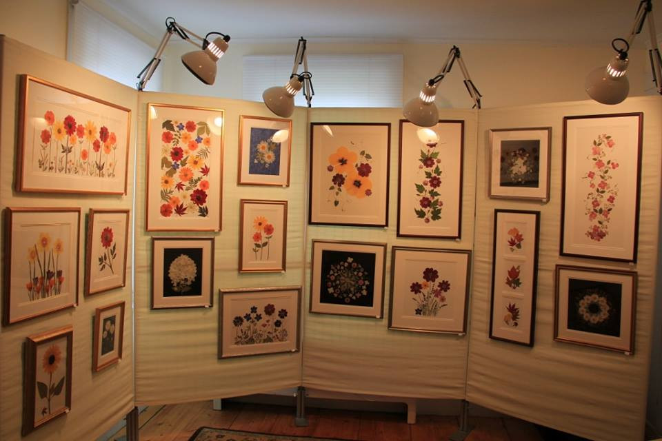 Various pressed flower art in frames hung on a white backdrop