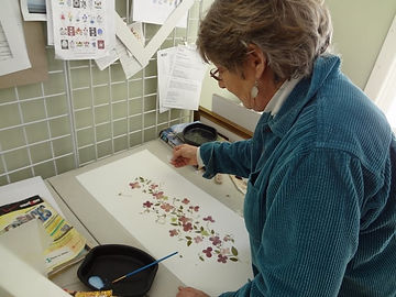 Ellie Roden - Pressed Flower Artist