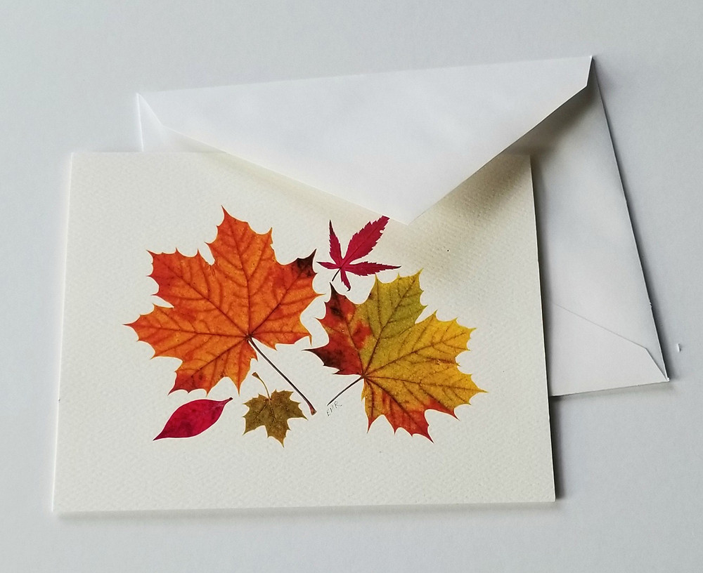 pressed fall leaves by Ellie Roden