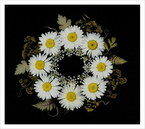 C23 - Daisy Wreath