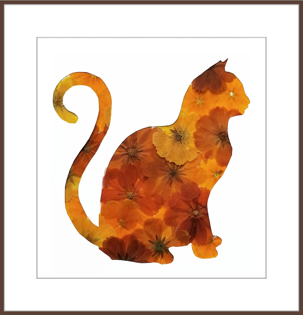 pressed flower cat artwork by Ellie Roden