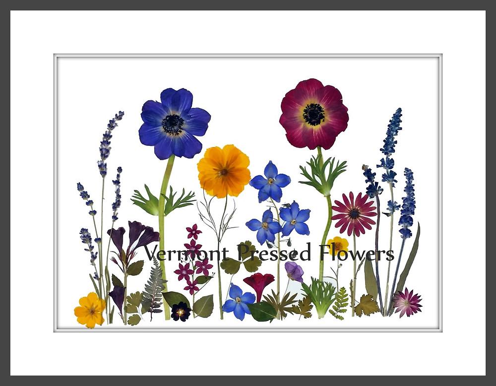 Pressed flower art - Vermont pressed flowers