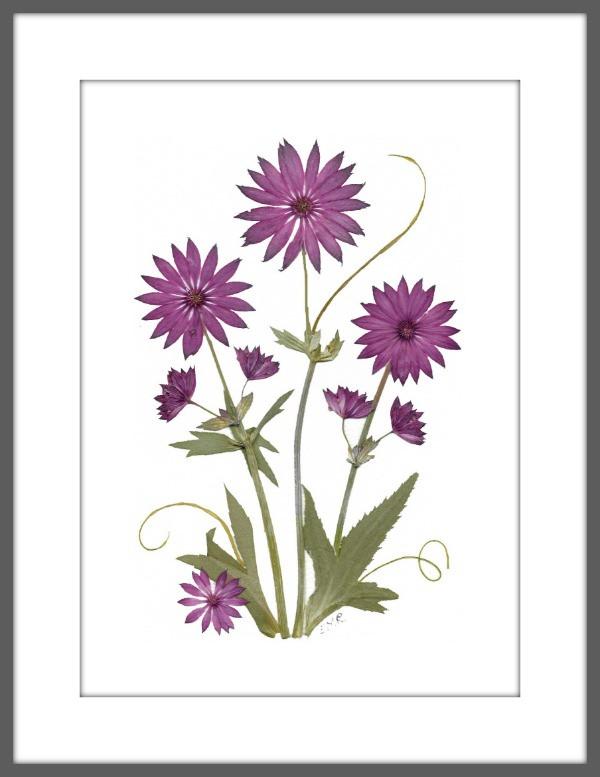 original pressed flower art