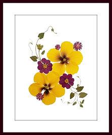 Pressed flower art ellie roden vermont pressed flowers pressed flower art original designs mightylinksfo Gallery