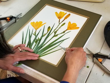 Mastering the Art of Flower Pressing