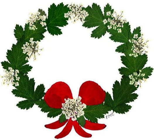 Christmas Wreath created with pressed flowers