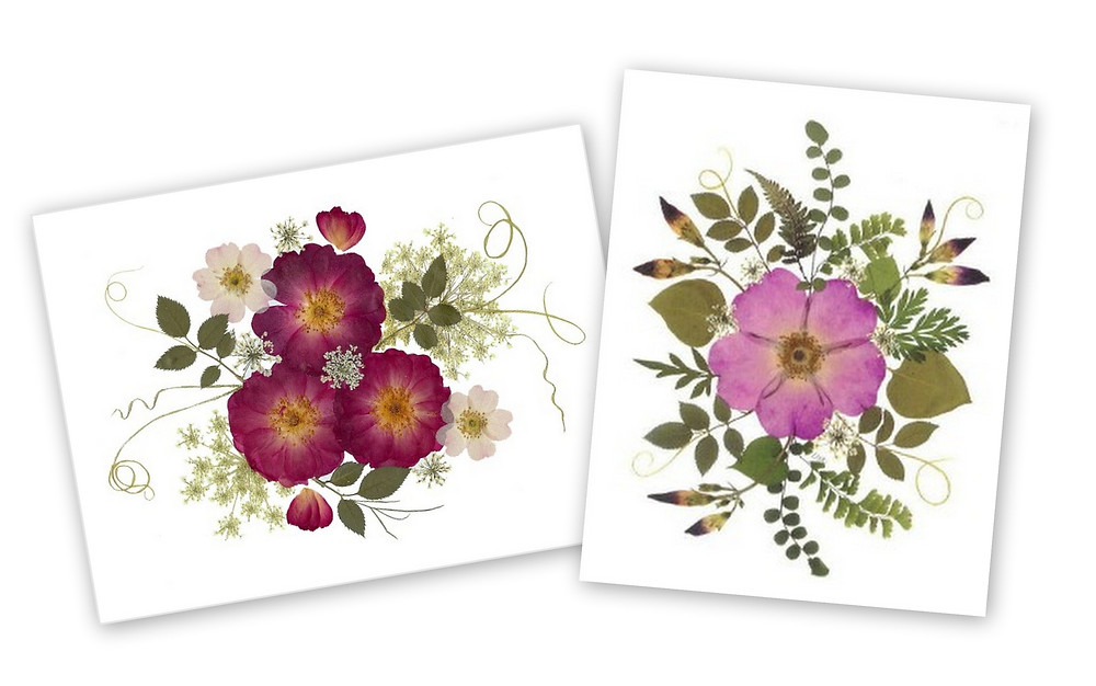 Two pressed flower notecards from Vermont Pressed Flowers