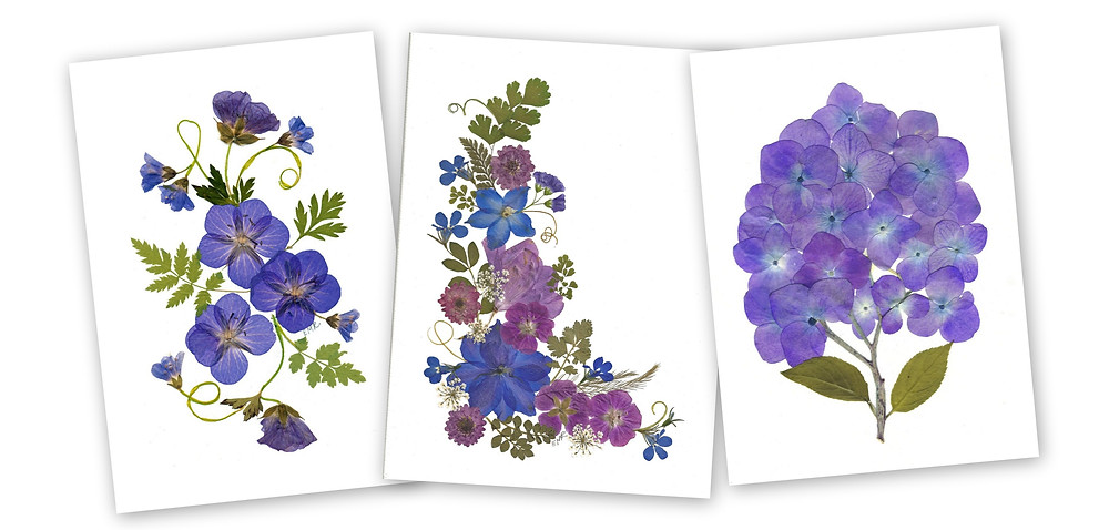 pressed flower notecards by Ellie Roden