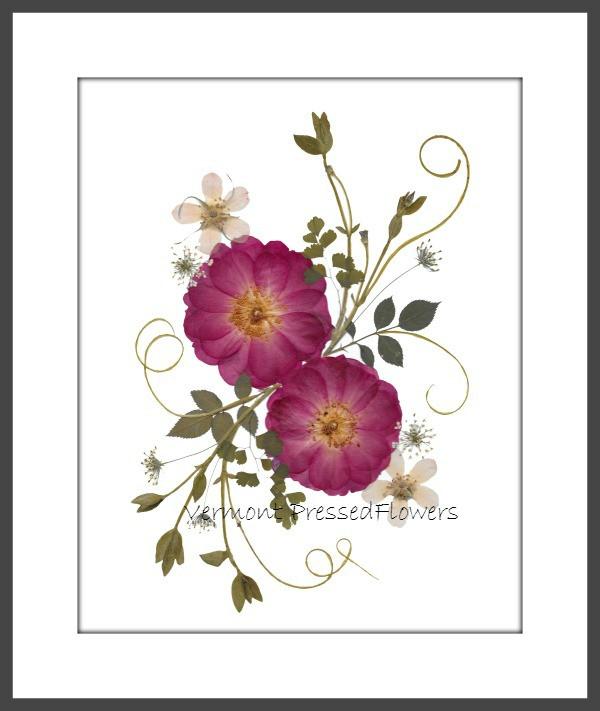 pressed flower wall art by Ellie Roden