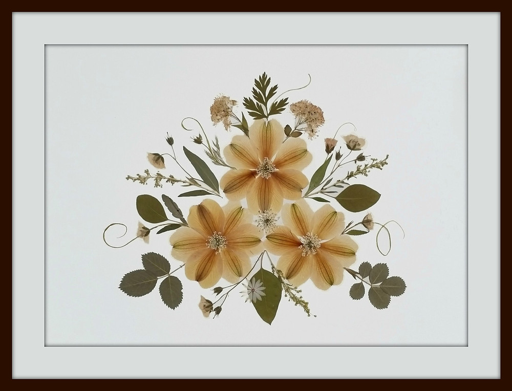 Faded flowers by Vermont Pressed Flowers, Alstromeria
