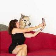 b2 alpaca and amy take selfie.JPG