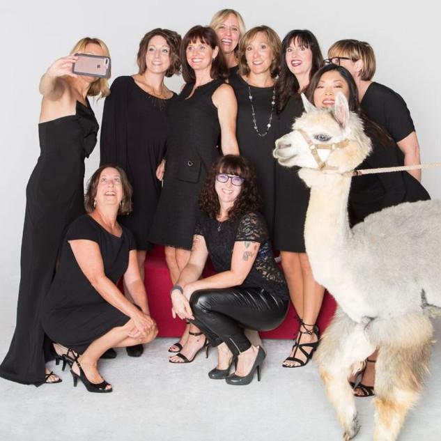 alpaca group pic.JPG
