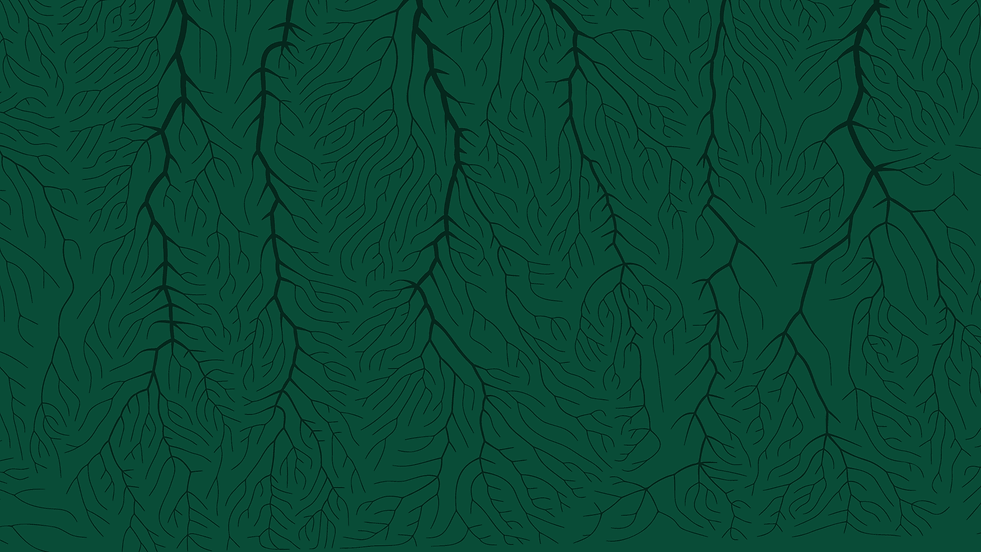 green_roots_web.png