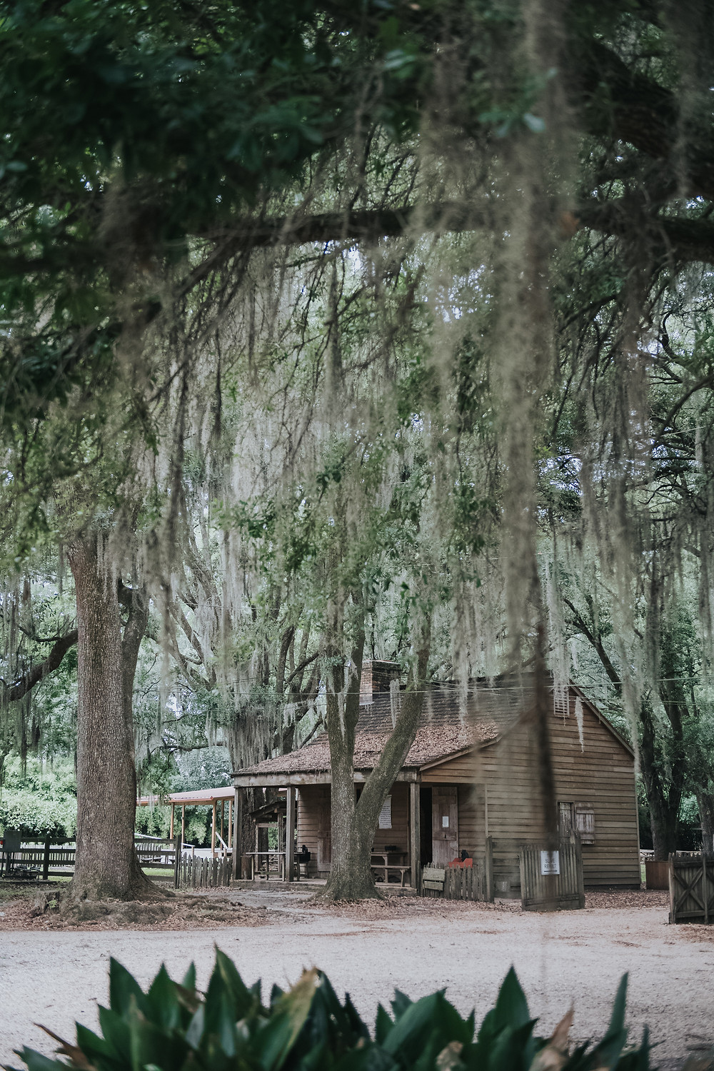 Slave Cabins, Destrehan Plantation