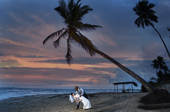 Sunset beach bride and groom photos under a palm tree at the Dominican Republic destination wedding