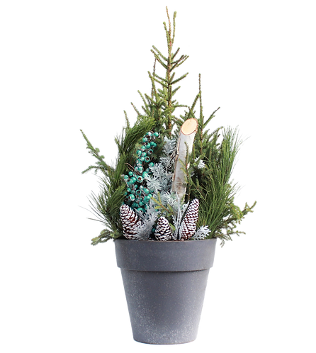 """14"""" Spruce Tip Container-Turquoise"""