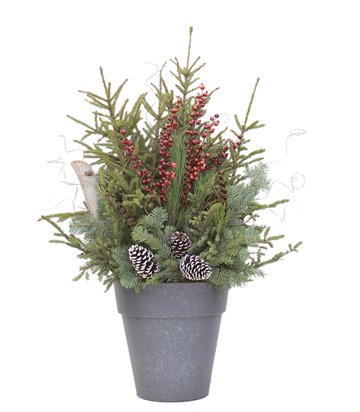 Spruce Tip Container with pheasant feathers
